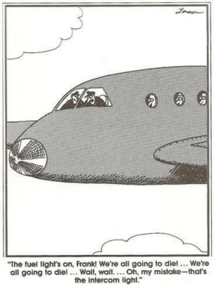 "Far Side: Lmoon  ""The fuel light's on, Frank! We're all going to die! ... We're  all going to die!... Wait, wait.... Oh, my mistake-that's  the intercom light."" Far Side"