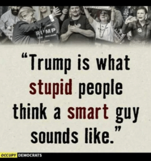 "stupid people: LMP  ""Trump is what  stupid people  think a smart guy  sounds like.  CUPY DEMOCRATS"