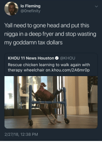 Blackpeopletwitter, Head, and News: lo Fleming  @Onefinity  Yall need to gone head and put this  nigga in a deep fryer and stop wasting  my goddamn tax dollars  KHOU 11 News Houston @KHOU  Rescue chicken learning to walk again with  therapy wheelchair on.khou.com/2A6mrOp  2/27/18, 12:38 PM <p>Bird Lives Matter (via /r/BlackPeopleTwitter)</p>