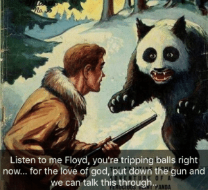 God, Love, and Panda: lo.  Listen to me Floyd, you're tripping balls right  now... for the love of god, put down the gun and  we can talk this through  O F A  NT PANDA Sometimes the caption makes all the difference