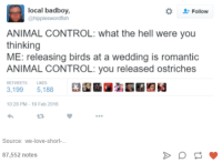 Love, Control, and Animal: local badboy,  @hippieswordfish  Follow  ANIMAL CONTROL: what the hell were you  thinking  ME: releasing birds at a wedding is romantic  ANIMAL CONTROL: you released ostriches  RETWEETS LIKES  3,199 5,188  10.28 PM- 19 Feb 2016  3  Source: we-love-short-  87,552 notes