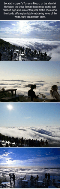 White, The Island, and Clouds: Located in Japan's lomamu Resort, on the island of  Hokkaido, the Unkai Terrace is a unique scenic spot  perched high atop a mountain peak that is often above  the clouds, offering tourists breathtaking views of the  white, fluffy sea beneath them <p>A Sea Of Clouds.</p>