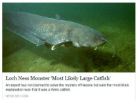 "Catfished, Loch Ness Monster, and Monster: Loch Ness Monster Most Likely Large Catfish  An expert has not claimed to solve the mystery of Nessie but said the most likely  explanation was that it was a Wels catfish.  NEWS.SKY.COM <p><a href=""http://smallmangosteen.tumblr.com/post/124321575487/cant-believe-nessie-is-rly-a-34-yr-old-accountant"" class=""tumblr_blog"" target=""_blank"">smallmangosteen</a>:</p>  <blockquote><p>cant believe nessie is rly a 34 yr old accountant from akron, ohio<br/></p></blockquote>"