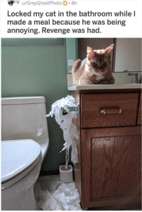 Revenge, Annoying, and Cat: Locked my cat in the bathroom while l  made a meal because he was being  annoying. Revenge was had.