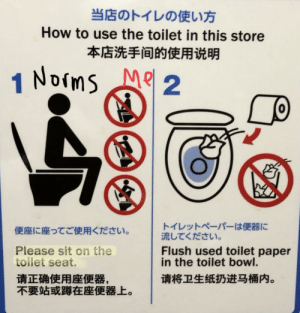 Funny, How To, and Bowl: LOELI  How to use the toilet in this store  NOims  M 2  1  Flush used toilet paper  in the toilet bowl.  Please sit on the  toilet seat.  EE What... am I doing it wrong??!!??