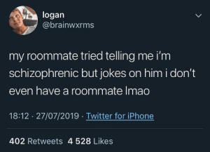 Jokes on you, ya dunce: logan  @brainwxrms  my roommate tried telling me i'm  schizophrenic but jokes on him i don't  even have a roommate Imao  18:12 27/07/2019 Twitter for iPhone  402 Retweets 4 528 Likes Jokes on you, ya dunce