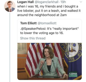 """When I was 16: Logan Hall @loganclarkhall - 19h  when i was 16, my friends and i bought a  live lobster, put it on a leash, and walked it  around the neighborhood at 2am  Tom Elliott @tomselliott  @SpeakerPelosi: It's """"really important""""  to lower the voting age to 16  Show this thread  CSPAN  C-span.org When I was 16"""