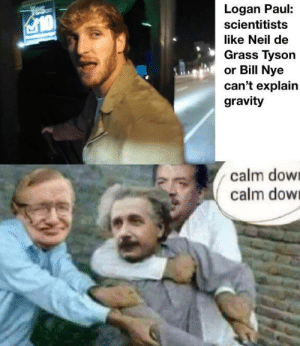 Be Like, Bill Nye, and Memes: Logan Paul:  scientitists  like Neil de  Grass Tyson  or Bill Nye  can't explain  gravity  calm dow  calm dow Einstein be like via /r/memes https://ift.tt/2r8E1uM