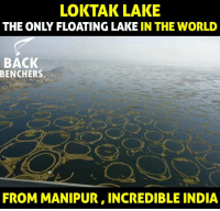 manipur: LOKTAK LAKE  THE ONLY FLOATING LAKE IN THE WORLD  BACK  BENCHERS  FROM MANIPUR, INCREDIBLE INDIA