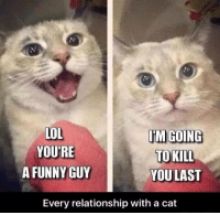 Funny, Lol, and Memes: LOL  IM GOING  YOURE  TO KILL  A FUNNY GUY  YOU LAST  Every relationship with a cat