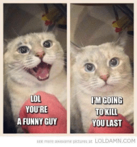 Memes, Awesome Pictures, and 🤖: LOL  IM GOING  YOURE  TO KILL  A FUNNY GUY  YOU LAST  see more awesome pictures at LOLDAMN.COM