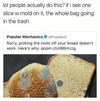 Ass, Lol, and Memes: lol people actually do this? if i see one  slice w mold on it, the whole bag going  in the trash  Popular Mechanics@PopMech  Sorry, picking the mold off your bread doesn't  work. Here's why. popm.ch/r66HUzg Man listen.. If your nasty ass picks mold off ya bread and still eats it then just unfollow me right now! ✌😒😷