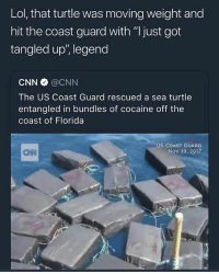 "cnn.com, Lol, and Memes: Lol, that turtle was moving weight and  hit the coast guard with ""l just got  tangled up', legend  CNN @CNN  The US Coast Guard rescued a sea turtle  entangled in bundles of cocaine off the  coast of Florida  US COAST GUARD  Nov 19, 2017  CNN @djgritz1 is a legend"