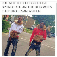 Lol, SpongeBob, and Fur: LOL WHY THEY DRESSED LIKE  SPONGEBOB AND PATRICK WHEN  THEY STOLE SANDYS FUR
