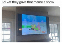 Lol, Meme, and Wtf: Lol wtf they gave that meme a show Since when?
