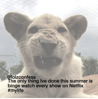 Memes, Netflix, and Summer: @lolzconfess  The only thing Ive done this summer is  binge watch every show on Netflix  COMMENT GOOD SHOWS TO BINGE WATCH confess confessing confession