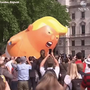 bob-belcher:  Trump Baby is airborne as Trump visits the UK!: London, England  bc  NEWS bob-belcher:  Trump Baby is airborne as Trump visits the UK!