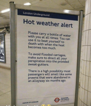 Smell, Too Much, and Death: London Underground  Hot weather alert  Please carry a bottle of water  with you at all times. You can  use it to beat yourself to  death with when the heat  becomes too much.  To avoid flooded carriages  make sure to direct all your  perspiration into the provided  sweat-gutters.  There is a high possibility most  passengers will smell like some  prawns that were abandoned in  an alleyway six months ago.  TRANSPORT  FOR LONDON  MAYOR OF LONDON London Underground Weather Update