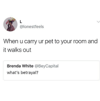 Memes, White, and 🤖: @lonestfeels  When u carry ur pet to your room and  it walks out  Brenda White @BeyCapital  what's betrayal? 😂No gratitude