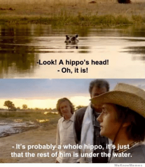 Oh really? by KioboiOO MORE MEMES: -Look! A hippo's head!  - Oh, it is!  - It's probably a whole hippo, it's just  that the rest offhim is under the water.  WeKnowMemes Oh really? by KioboiOO MORE MEMES