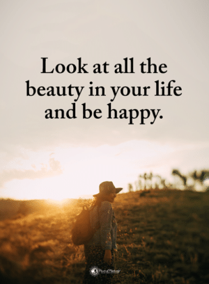 Life, Memes, and Happy: Look at all the  beauty in your life  and be happy