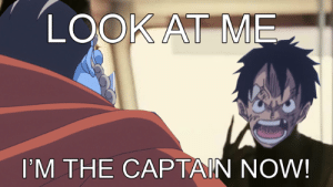 MemePiece, Now, and Look: LOOK AT ME  I'M THE CAPTAIN NOW! I'm the captain now!