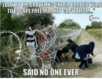 market capitalization: LOOK AT MECRAWLING UNDER BARBED WIRE  TOESCAPE FREE MARKET CAPITALISM  SAID NO ONE EVER