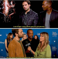 Memes, Dress, and Match: Look at that. Look at those eyes are just piercing.  323  ex  B23  DisNEp Did you wear that dress to match his eyes? You heard about his eyes. I hate conjugations sebastianstan anthonymackie repost