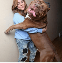 LOOK AT THE SIZE OF THIS MONSTER.. the dogs cute too: LOOK AT THE SIZE OF THIS MONSTER.. the dogs cute too