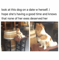 """Bless Up, God, and Head: look at this dog on a date w herself. i  hope she's having a good time and knows  that none of her exes deserved her Now the thing about """"Get Out"""" is, he had his chance. He seen the little door open. He poked his head inside. He flipped thru homegirl's pics. He seen old boy who was now the groundskeeper. He seen old girl who was now the maid. In plain sight God gave this boy a sign: """"SON...YOU IN TROUBLE. GET OUT."""" 😂 Did he jump out the window tho? He could have. There was a window. He had the choice. But he did not. Why not tho? Why did he go along with his girl downstairs to meet his certain demise? The answer came while he was by the lake with her earlier, when he told her: """"you're all I got."""" Never knew his pops. Mom had passed away. He had invested everything in her. This is why sometimes we - as weak, frail humans - even after getting a clear sign from God that a relationship means danger - what do we do? We don't run. We don't get out. We double down on it. We go the extra mile to try to prove ourselves wrong: """"I can make this work. I love this person. They're all I got."""" The higher he built her up in terms of importance to him, the further he fell - endlessly, in fact, into the abyss of the Sunken Place. Let me tell u this and I need u to understand it: they're NEVER all u got. Don't ever - EVER - make the mistake of wrapping up your happiness - your entire damn existence - in another human. Shit - what if they get hit by a bus and die? Fuck u gon do then? Jump in front of a bus and die too? 😂 Fuck nah. U gon get the fuck up and move the fuck on. As Don Draper say, ONWARD and UPWARD. Everybody on EARTH could abandon u but u will ALWAYS have God and God is sufficient for u. Aight? If God moves u...MOVE, motherfucker. Bless up 😍😂😂😂"""