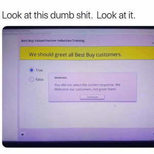 Would you look at that: Look at this dumb shit. Look at it.  Coogle Chrome  ndex Imahimi  ty.comteutphotooncddatatceni  Best Buy Valued Partner Induction Training  Re  We should greet all Best Buy customers.  True  Incorrect  False  You did not select the correct response. We  Welcome our customers, not greet them,  Continue Would you look at that