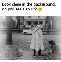 Funny, Gif, and Spirit: Look close in the background,  do you see a spirit? Double tap when u see it (@joke.gif )