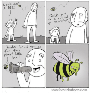 I ❤️ 🐝s via /r/wholesomememes http://bit.ly/2EwkJqb: Look dad!  A BEE!  Quick get  me a rolled  p newspaper  Thanks for al You do  for this  planet little  bee!  www.lunarbaboon.com  Ola I ❤️ 🐝s via /r/wholesomememes http://bit.ly/2EwkJqb