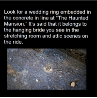 "Memes, Wedding, and Haunting: Look for a wedding ring embedded in  the concrete in line at ""The Haunted  Mansion."" It's said that it belongs to  the hanging bride you see in the  stretching room and attic scenes on  the ride - Pretty sure I have strep throat😩🤒 scarystories"