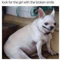 Dank, Girl, and Smile: look for the girl with the broken smile ask her if she wants to bork a while