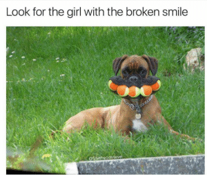 20+ Funny Tumblr Posts A Day Keeps Depression Away (Episode #429): Look for the girl with the broken smile  @Shitheadsteve 20+ Funny Tumblr Posts A Day Keeps Depression Away (Episode #429)