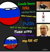Deal with it! -Krathos-: Look here  Cyka  only things I like are  Adidas tracksuit, vodka  Putin  AND IF You DON'T LIKE  THEN GTFO  BEFORE I SHOOT YOU WITH  my AK-47 Deal with it! -Krathos-