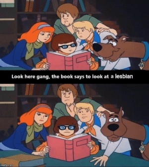 Gang, Book, and Lesbian: Look here gang, the book says to look at a lesbian  imgflip.com