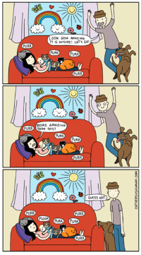Amazon, Ignorant, and Kitties: Look How AMALING  LET's GO!  PURR  PURA  PURR  MORE AMAZING  PURR THAN THIS?  AURA  PURR  PURR  I GUESS NOT.  PURR  PURR  PLOOR  PURRA New comic: Naps http://www.catversushuman.com/2016/09/naps-are-precious-commodity-nowadays.html  Thanks for participating in the Fairy Tails giveaway! The winner is Katja Pavlovna! Please check your PM for details.   I loved reading your comments, by the way. I think it's safe to say that we all have the fairest kitties, If I had to pick one from my own, I'd pick Oscar (the fluffy orange one), because he's the sweetest (and he doesn't ignore me, ha!).  xo Yasmine  Fairy Tails can be found here here: https://www.amazon.com/Cat-vs-Human-Fairy-Tails/dp/1449470688  And your local bookstore :)