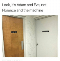Adam and Eve, Memes, and 🤖: Look, it's Adam and Eve, not  Florence and the machine  MECHANICAL  WOMEN I'm going to sleep now very very early