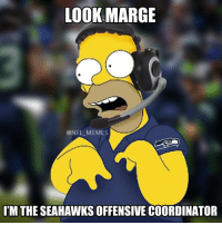 Seahawks, Seahawk, and Coordination: LOOK MARGE  @NFL MEMES  I'M THE SEAHAWKS OFFENSIVE COORDINATOR Look Marge!