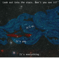 Beautiful, Reddit, and Stars: Look out into the stars. Don't you see it?  us  It's you  It's everything. [Src]