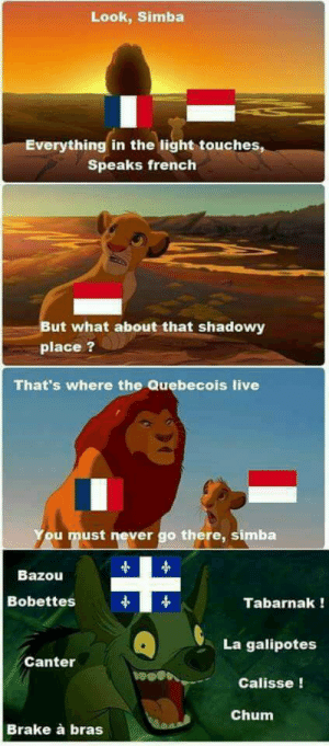 When the tabarnak hit the baquettes!: Look, Simba  Everything in the light touches,  Speaks french  But what about that shadowy  place ?  That's where the Quebecois live  ou must never go there, simba  Bazou  Bobettes  Tabarnak!  La galipotes  Canter  wos  Calisse!  Chum  Brake à bras When the tabarnak hit the baquettes!