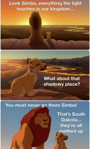 Dank Memes, Never, and Kingdom: Look Simba, everything the light  touches is our kingdom...  What about that  shadowy place?  You must never go there Simba!  That's South  Dakota...  they're all  methed up Meth we're on it.