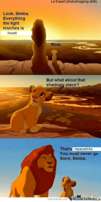How I feel explaining subreddits to noob Redditors: Look, Simba.  Everything  the light  touches is  Reddit  Le Expert photoshopping skills  WOW.  But what about that  shadowy place?  That  rlspacedicks  You must never go  there, Simba.  memecenter.com  Mametenler How I feel explaining subreddits to noob Redditors