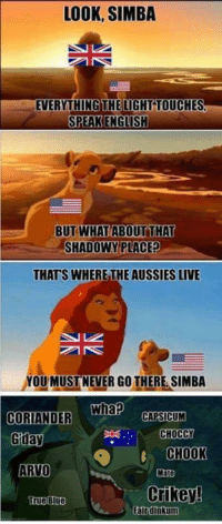 Disney, Funny, and True: LOOK, SIMBA  EVERYTHING THELIGHT TOUCHES  BUT WHAT ABOUTTHAT  SHADOWY PLACE?  THATS WHERE THE AUSSIES LIVE  YOU MUSTNEVER GO THERE SIMBA  CORIANDER Whap  duay  UM  CHOCCY  CHOOK  Mate  ARVO  Crikey!  True Blue  Falrdinkum Like the Alternative Disney page!