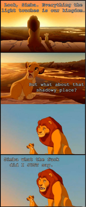 Simbas: Look Simbao Bverything the  light touches is our kingdom.  But what about that  shadowy place?   Simba what the fuck  did I JUST say