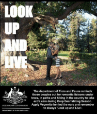 "Tumblr, Australia, and Bear: LOOK  UP  The department of Flora and Fauna reminds  those couples out for romantic liaisons under  es, in parks and hiking in the country to take  extra care during Drop Bear Mating Season.  AUSTRALIAN GOVERNMENT Apply Vegemite behind the ears and remember  to always 'Look up and Live'  DEPARTMENT OF FLORA AND FAUNA <p><a href=""http://lolsupport.tumblr.com/post/150440729587/it-is-that-time-again-australia"" class=""tumblr_blog"">lolsupport</a>:</p>  <blockquote><p>It is that time again, Australia</p></blockquote>"