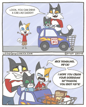 Cats, CoCo, and Wow: LOOK, YOU CAN DRIVE  A CAR LIKE DADDY!  wOW  #1  Litterbo×Comics.com  OFran Hause  NICE SIGNALING,  PR*CK!  의 //  I HOPE YOU CRASH  YOUR GODD@MN  SH*TWAGON  YOU IDIOT F@*K!  0  COCO  UMYUM  PH Y Copy Cats [OC]