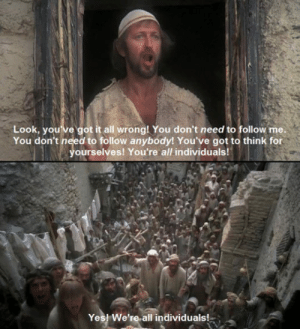 Love, Tumblr, and Blog: Look, you ve got it all wrong! You don't need to follow me.  You don't need to follow anybody! You've got to think for  ourselves! You're all individuals  Yes! We're-all individuals! srsfunny:I Love Monty Python